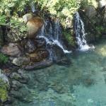 湧き水が小さな滝を作っていた