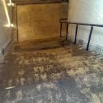 1912年の階段?